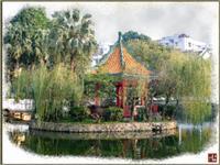 Xin Hui Park