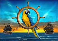 Macaw Pirate Parrot