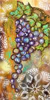 Vinyard Of Grapes