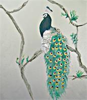 Peacock In The Morning As Framed Poster
