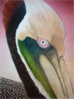 Pelican Peeking
