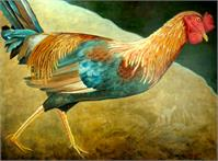 Running Rooster As Greeting Card