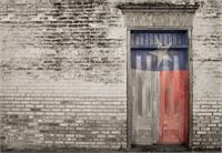 Door With TX Flag