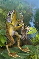 Frog Plying Saxophone
