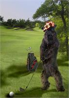 Golfing Terrier