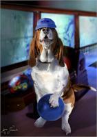 Hound Dog Bowling
