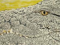 Face Of Crocodile