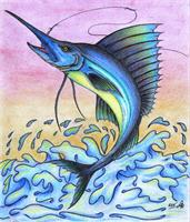 The Giant Blue Sailfish Original Drawing