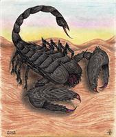 Fury Scorpion