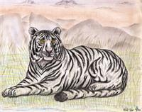 The Enchanting White Tiger As Calendar