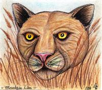 The Prowling Panther Original Full Color Drawing