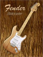 American Fender Stratocaster