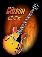 Wonderful Gibson ES-335