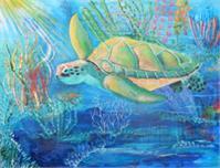 Sea Turtle Swim