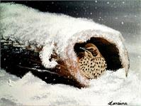 Bird In A Log In Snow