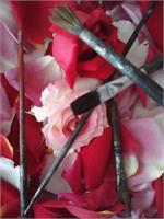 Paintbrush Rose