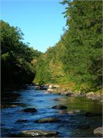 October Salmon River