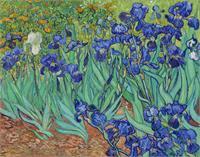 Van Gogh S Irises 1889