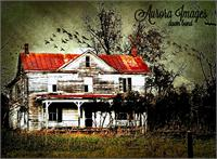 Abandoned #4