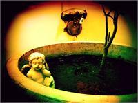 Cherub In Tub 1 As Framed Poster