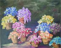 Colorful Flowers With Pots