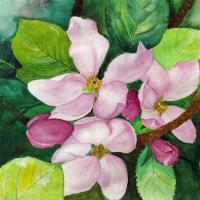 Romantic Apple Blossom Soft Watercolor Art