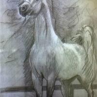 Glory horse