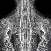 Beyond The Veil #10