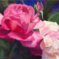 Victoria's Roses
