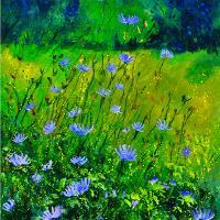 Cornflowers 68