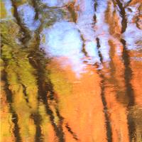 Autumn Reflections On The Waters Of Oak Creek Sedona Arizona