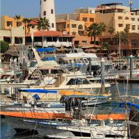 Harbor Waterfront In Cabo San Lucas
