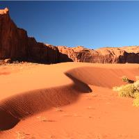 Sand Dune And Sage Brush Monument Valley Arizona By Roupen Baker