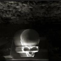Skulls, Skull, Teschi, Teschio - Fotografia Di Augusto De Luca. 54