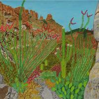 Pima Canyon In Arizona Desert