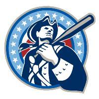 American Patriot Baseball Bat Retro