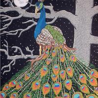 """""""Midnight Bird"""""""