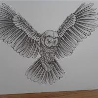 Big Grey Owl