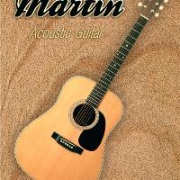 Wonderful Martin Acoustic Guitar