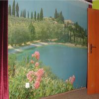 Photo Wallpaper On A Wall