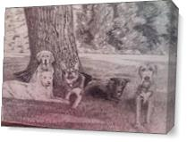 5 Dogs Under A Tree As Canvas