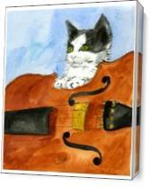 Kitten On Violin As Canvas