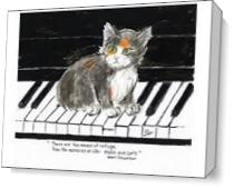 Music And Cats As Canvas