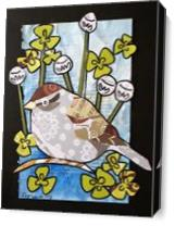 Chipping Sparrow As Canvas