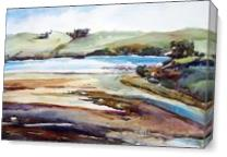 Tomales Bay Mud Flats As Canvas