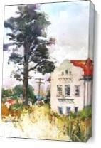 Summer In The Presidio As Canvas