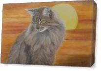 Cat And Sunset As Canvas