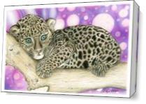 Baby Jaguar As Canvas