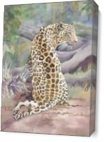 Big Cat Rescue Simba The Leopard As Canvas