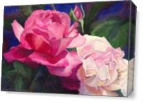 Victoria's Roses As Canvas